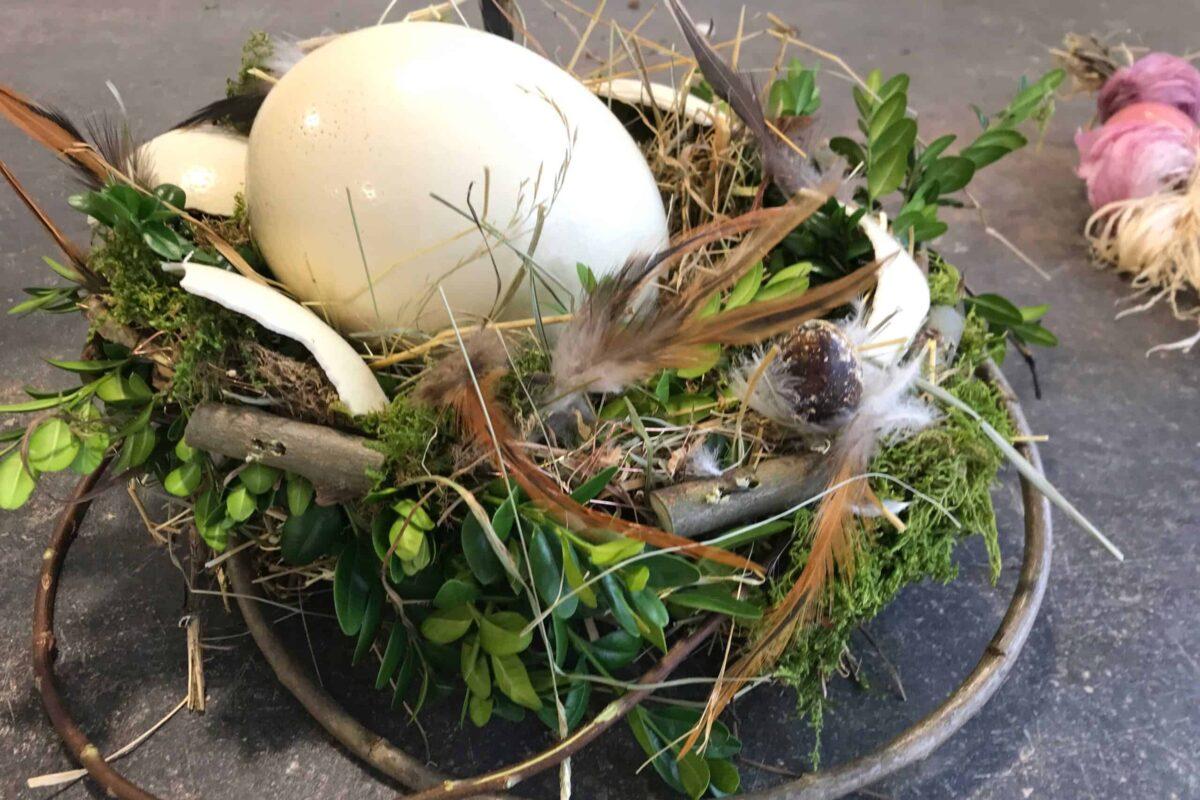 Straußenei im Nest