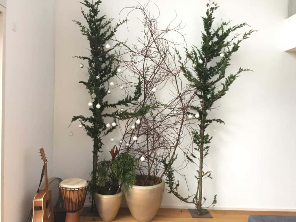 Weihnachten im Topf mit Zweige